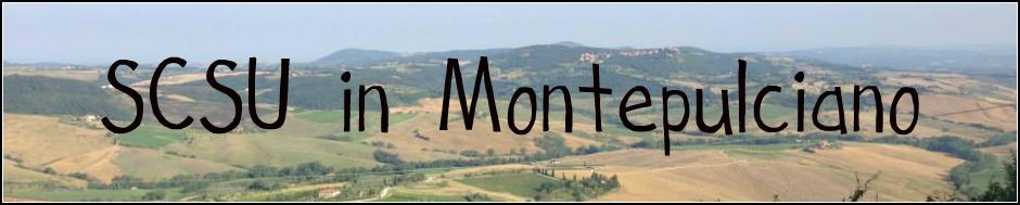montepulciano.banner.website